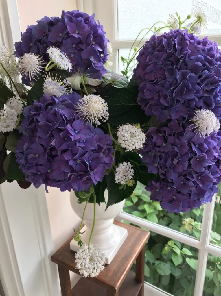 レストランラマレのエントランスにある紫陽花