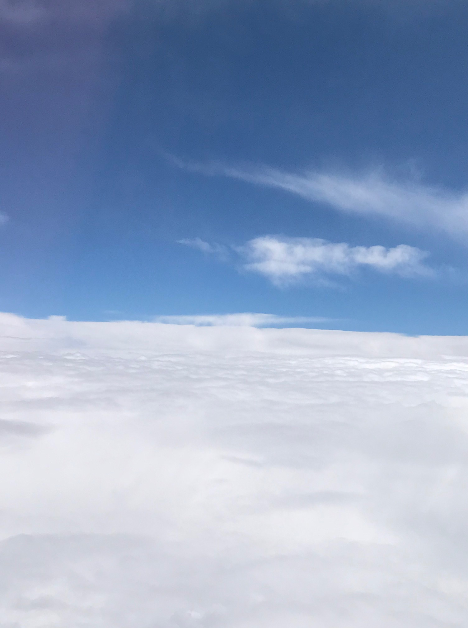 福岡へ向かう飛行機から見えた、青空と雲海